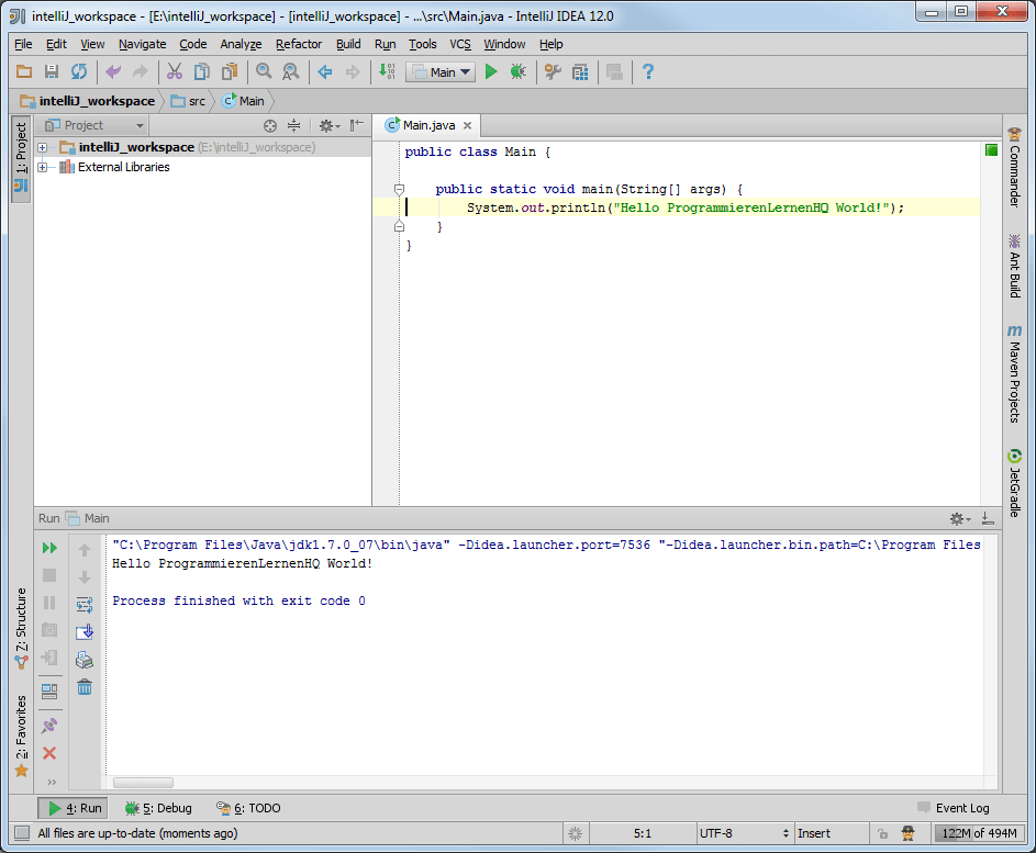 Java-Entwicklungsumgebung IntelliJ IDEA Perspektive Run