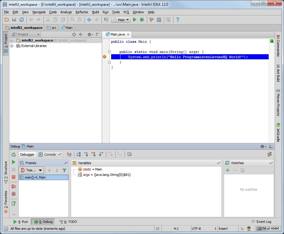 Java-Entwicklungsumgebung IntelliJ IDEA Perspektive Debug