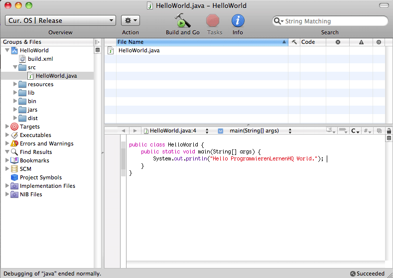 Java-Entwicklungsumgebung Xcode Programmier-Ansicht